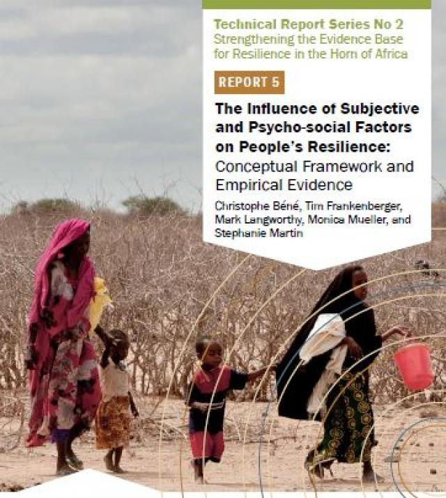 Download Resource: The Influence of Subjective and Psycho-social Factors on People's Resilience: Conceptual Framework and Empirical Evidence